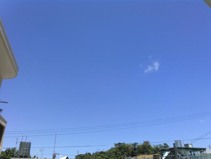 台風12号が来る!今年は50年ぶりの台風年だよ。台風の過ごし方は?