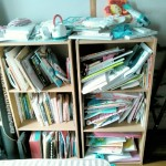 こんまり流でも本が捨てられない理由と一時的な片付け方法