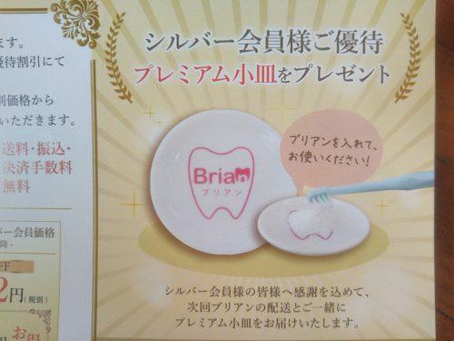 歯磨き粉ブリアン