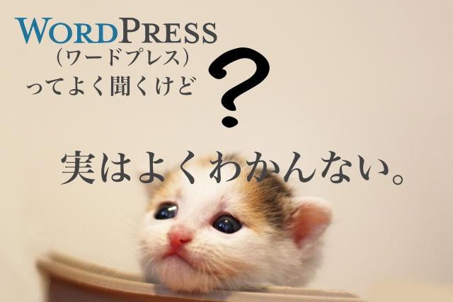 えら部フェス2019でワードプレス無料相談会を開催します!