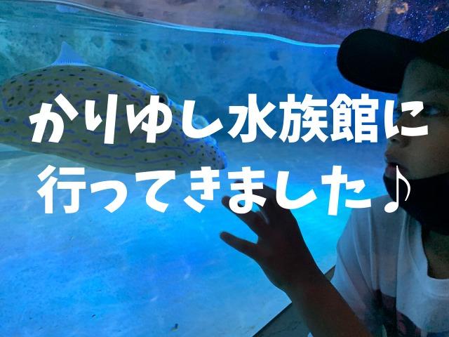 かりゆし水族館に行ってきた